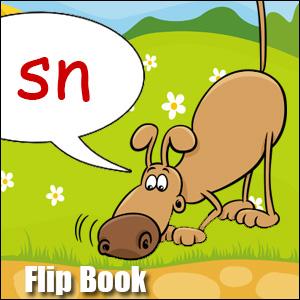 sn words