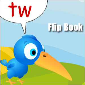 tw phonics flip book