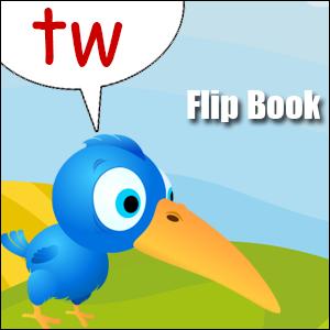 tw phonics flip book
