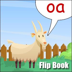 Flip Book oa Phonics poster