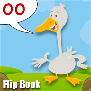 Flip Book oo Phonics poster