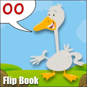 Flip Book oo Phonics poster