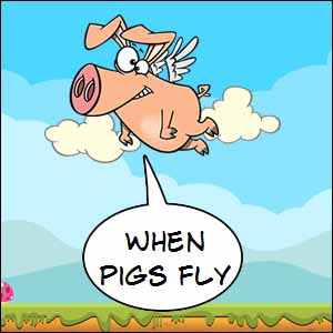 What Does 'pigs might fly' mean?